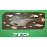 Панно Рыба муляж (Лещ) 51*20см