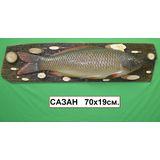 Панно Рыба муляж (Сазан) 70*19см